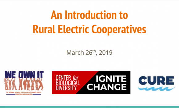 Introduction to rural electric cooperatives webinar slide